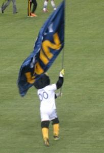 Cozmo - Galaxy win flag